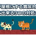 屋根の猫被害